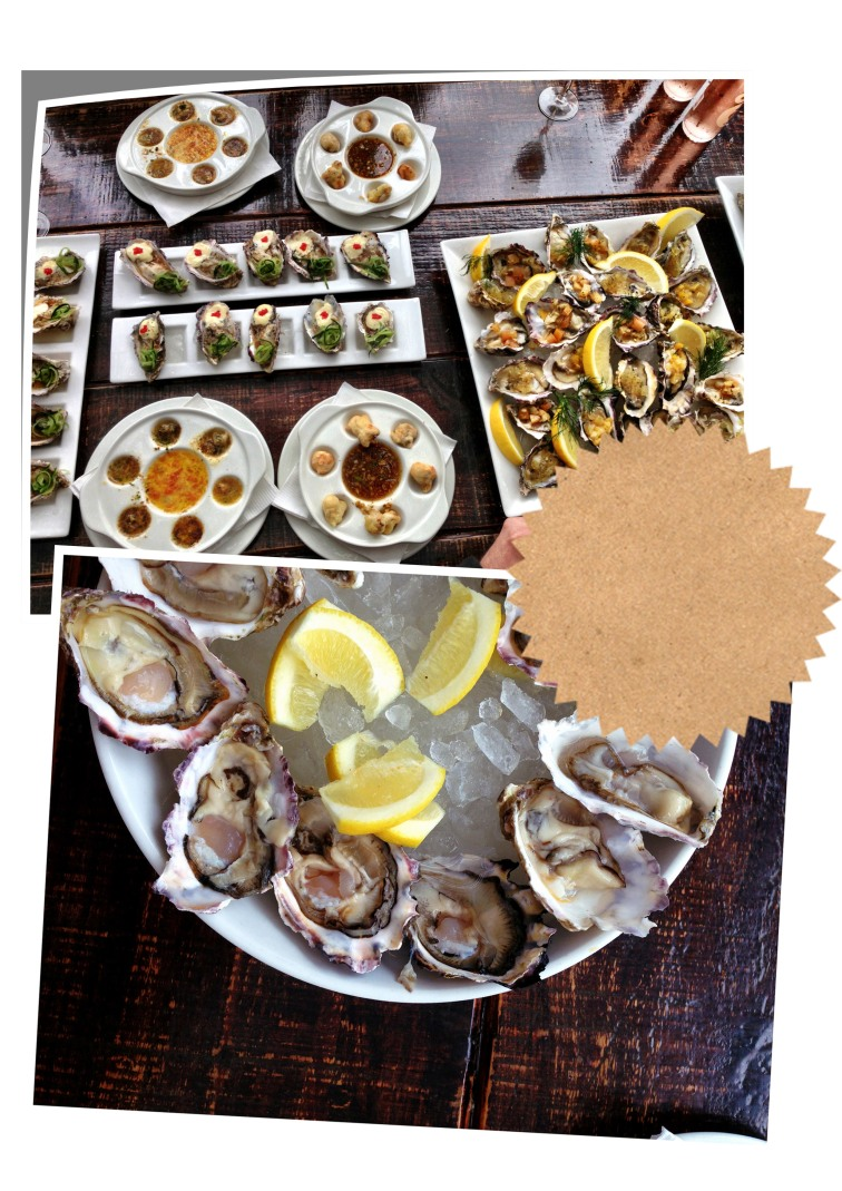 oysters10