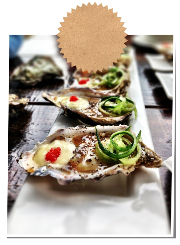 oysters9